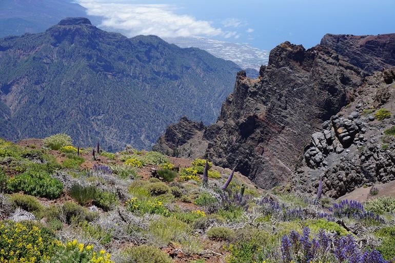 El TMT refuerza su compromiso por convertirse en un buen vecino de La Palma
